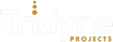 Tridyne Projects Corporation